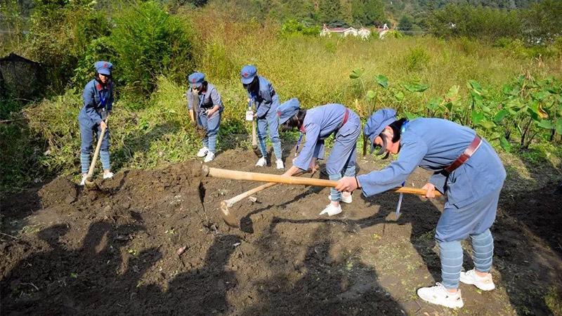 井冈山农耕劳动教育3天2晚课程安排